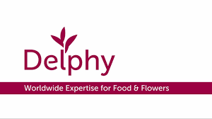 Logo Delphy